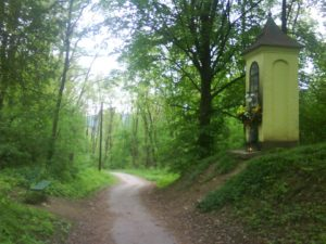 Žilinský lesopark Chrásť - cesta na univerzitu. foto autor.